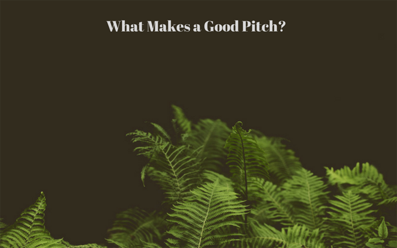 Art-Ed: What Makes a Good Pitch?